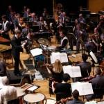 Tolkala v orkestru 14